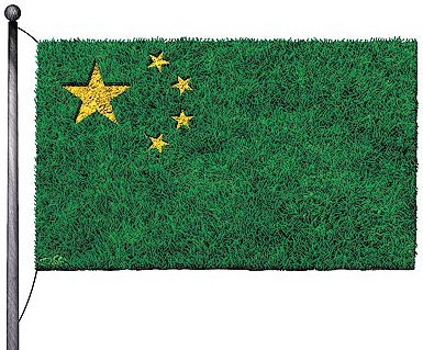 China green eco flag